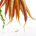 carrots-1149173_1280